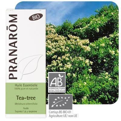 Pranarom Tea tree bio huile essentielle, 30 ml