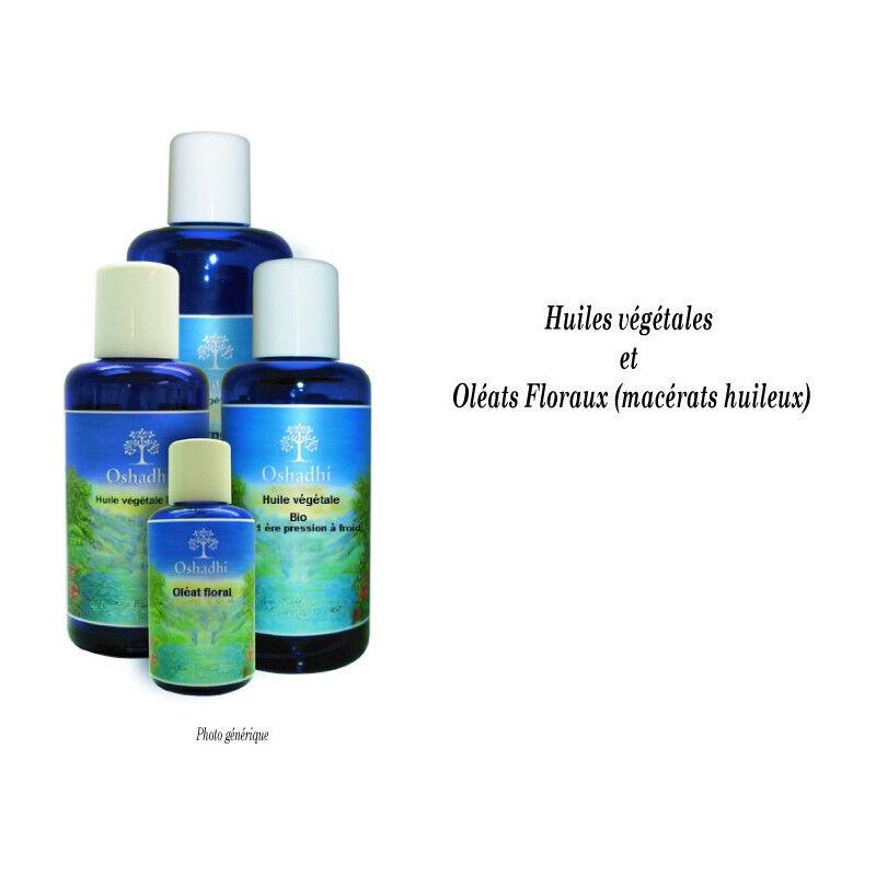 Oshadhi Beurre végétal Noix de coco - Cocos nucifera - Bio