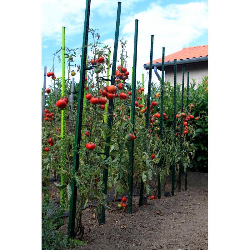 Jardin et Saisons Tuteur à tomate en plastique recyclé 1,80 m vert sapin