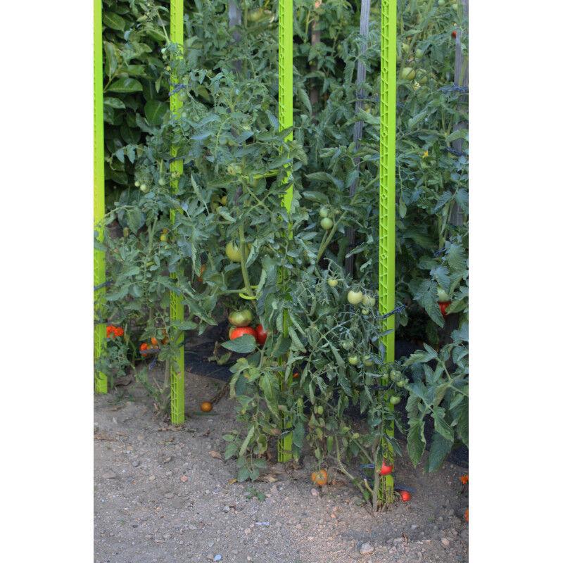 Jardin et Saisons Tuteur à tomate en plastique recyclé 1,80 m vert anis