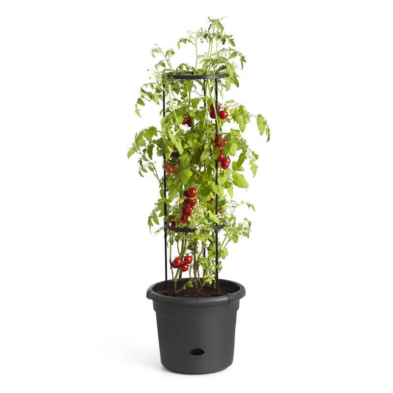 Jardin et Saisons Pot à tomates 10 L avec réserve d'eau et tuteur