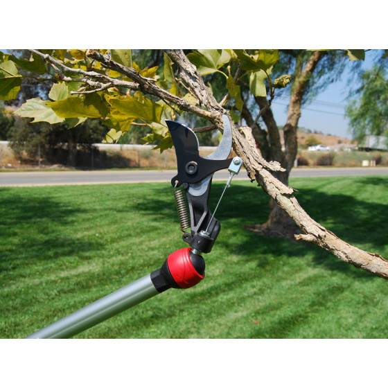 Jardin et Saisons Echenilloir coupe branche orientable
