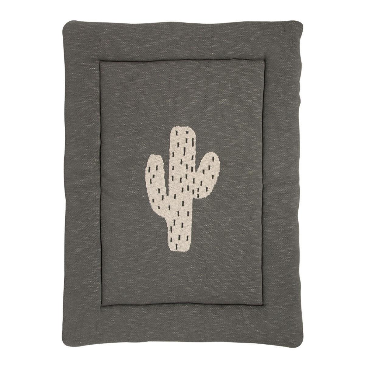 Quax Fond de Parc - Cactus