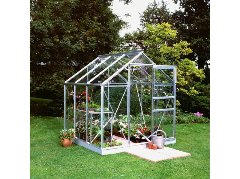 Halls Serre en verre horticole 3 mm POPULAR 66 - couleur aluminium naturel