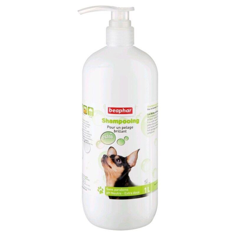 BEAPHAR shampoing brillance du pelage
