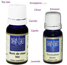 Herbes et Traditions - Huile essentielle Geranium Rosat Bio - 5ml