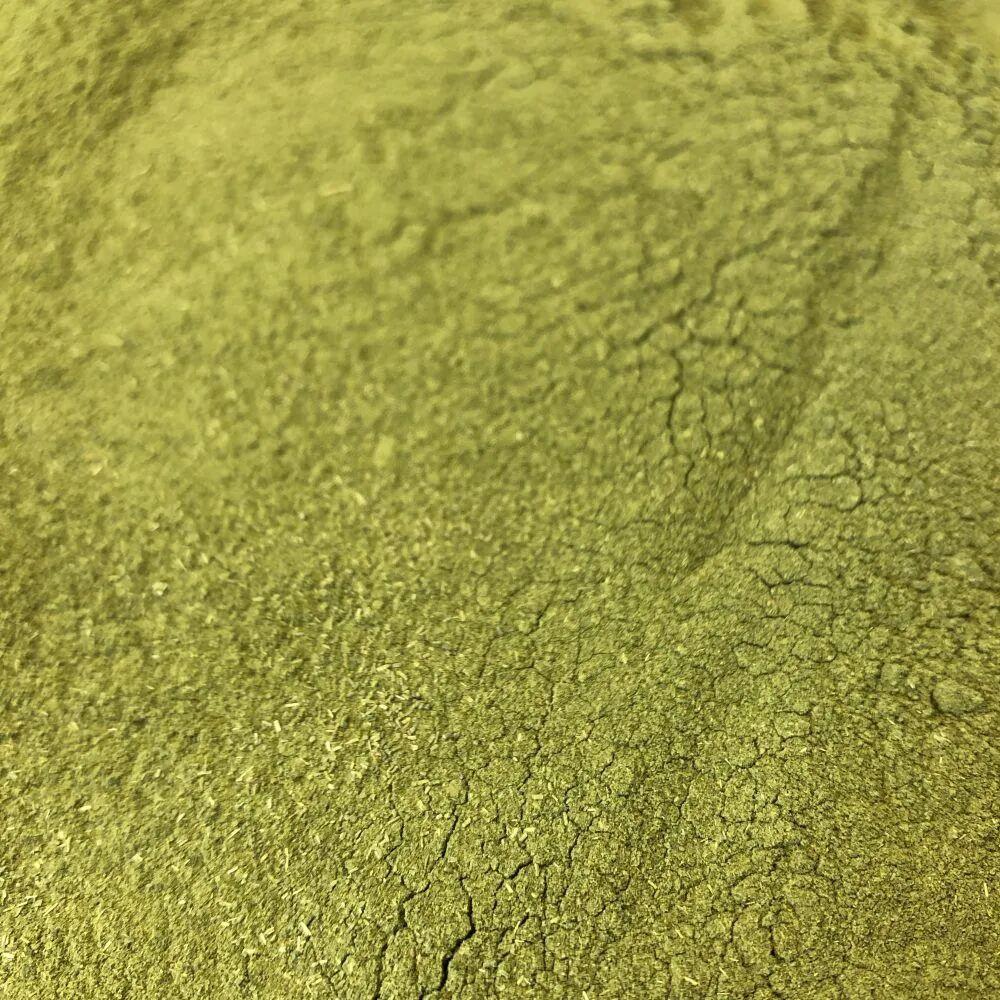 Louis Moringa Bio - Feuille Poudre 100g - Tisane de Moringa oleifera