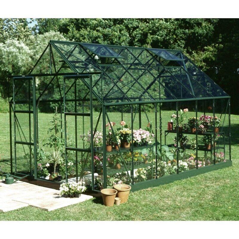 Halls Serre de jardin 9,9m² verte en verre horticole Magnum Halls