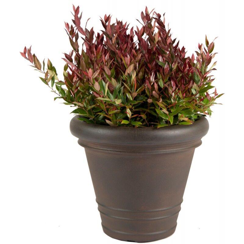 Mega Collections Bac à plantes rotomoulé Rinca Doppio rouille D.82xH.63cm - MegaCollections