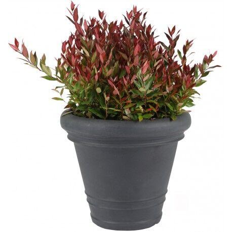 Mega Collections Bac à plantes rotomoulé Rinca Doppio anthracite D.61xH.46cm - MegaCollections