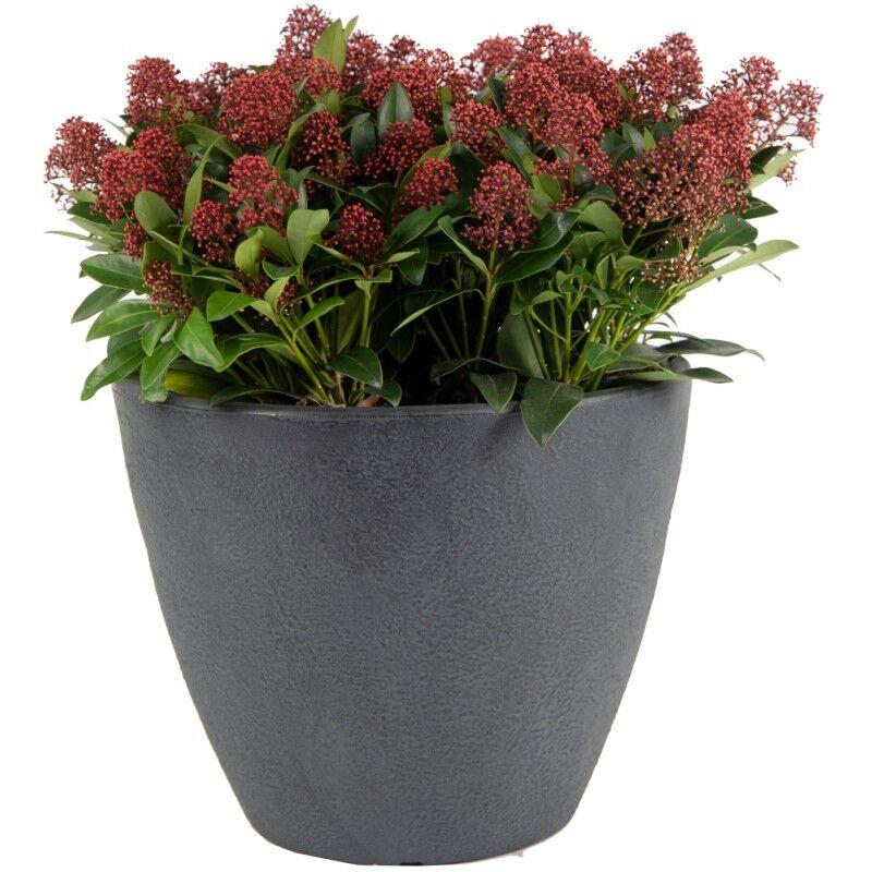 Mega Collections Bac à plantes rotomoulé Rinca Acorn anthracite D.50xH.41cm - MegaCollections