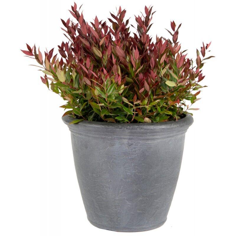 Mega Collections Bac à plantes en plastique rotomoulé Rinca Kiri gris clair D.61xH.50cm - MegaCollections
