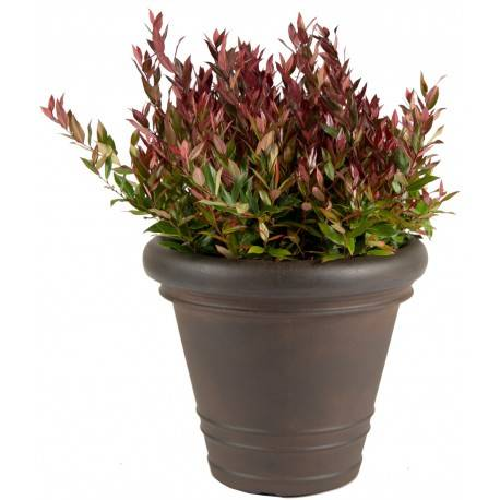 Mega Collections Bac à plantes rotomoulé Rinca Rolled Rim rouille D.41xH.34cm - MegaCollections