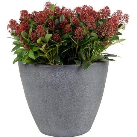 Mega Collections Bac à plantes rotomoulé Rinca Acorn gris clair D.40xH.35cm - MegaCollections