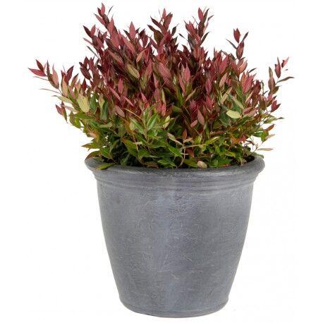 Mega Collections Bac à plantes en plastique rotomoulé Rinca Kiri gris clair D.50xH.41cm - MegaCollections
