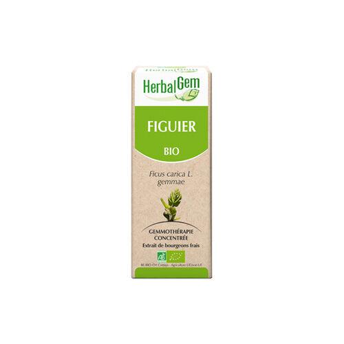 Herbalgem Figuier 15 ml