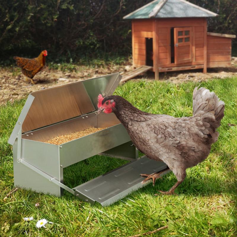 IDMarket Mangeoire XL pour poules distributeur automatique à pédale en acier 5 kg