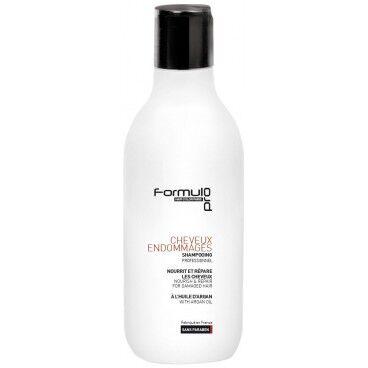 Formul Pro Shampooing à l'huile d'argan cheveux fragiles Formul Pro 250ML