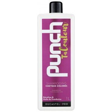 Ducastel Pro Shampooing Punch Ta Couleur Cheveux Colorés 1L - Ducastel