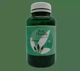 Floralpina Plantain 120 gélules