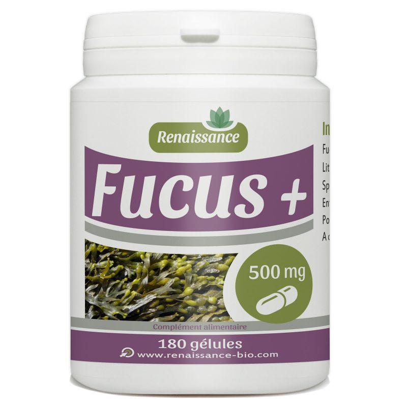 Renaissance Bio Fucus - 500 mg - 180 gélules