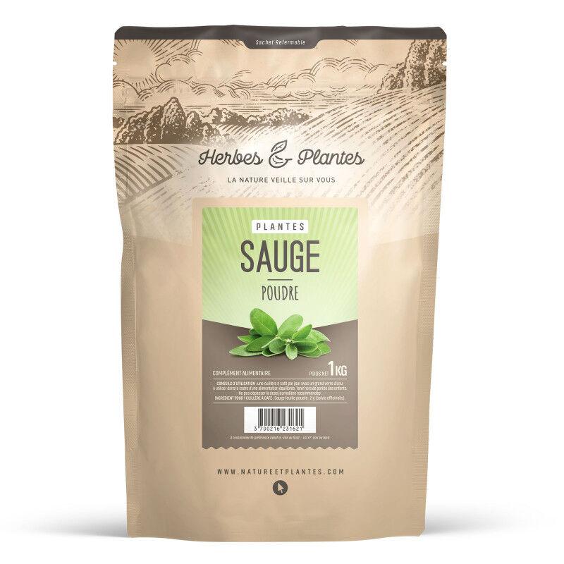 Herbes et Plantes Sauge - Poudre 1 kg