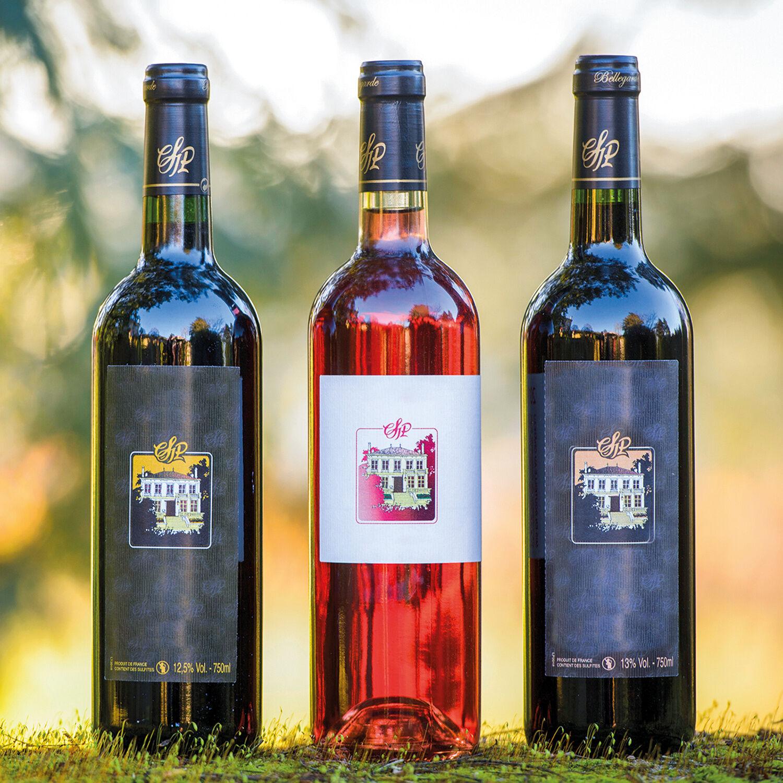 Smartbox Coffret de vins à déguster à la maison Coffret cadeau Smartbox