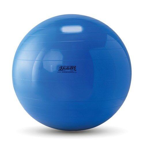 NRS Ballon de gymnastique Gymnic - 650 mm