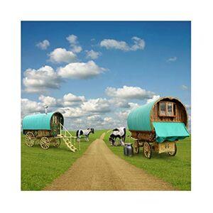 Cassisy 2,5x2,5m Vinyle Ferme Toile de Fond Photo en Plein air Le Chariot Champs d'herbe Verte Ciel Bleu Nuages Fond De Studio Photo Enfant Adulte Photographie Props Photobooth - Publicité