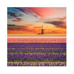 Leowefowa 3x3m Vinyle Printemps Toile de Fond Photo Coloré Champs de Fleurs de Fleurs Moulin  Vent hollandais Coucher de Soleil Fond De Studio Photo Adulte Portrait Photographie Props Photobooth - Publicité