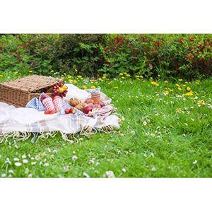 Cassisy 3x2m Vinyle Printemps Toile de Fond Photo en Plein air Champs de Fleurs Panier  provisions Tissu Pique Nique Sunny Sky Fond De Studio Photo Portrait Photographie Props Photobooth - Publicité