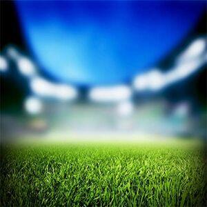 Leowefowa 2,5x2,5m Vinyle des Sports Toile de Fond Photo Les terrains de Football Le Stade Les Champs d'herbe Verte Fond De Studio Photo Photographie Props Photobooth - Publicité