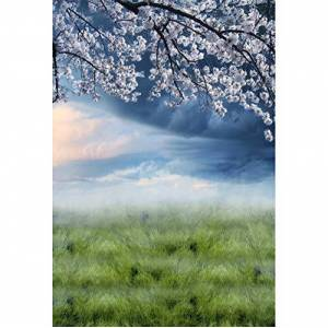 Cassisy 2x3m Vinyle Printemps Toile de Fond Photo en Plein air Aquarelle Floraison Fleur de Cerisier Champs d'herbe Fond De Studio Photo Portrait Photographie Props Photobooth - Publicité