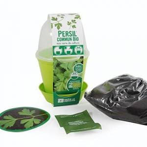 Radis et Capucine Pot Cloche Persil commun bio - Publicité