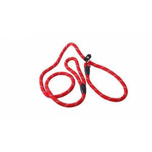 Ecloud Shop Laisse Collier 10MM en Nylon pour Chien Chat Dressage - Publicité