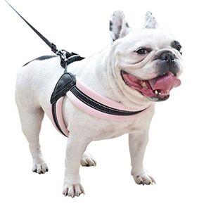 CAOQAO Gilet RéFléChissant Puppy Dog Harnais Laisse RéGlable Harnais Souple Laisse RéGlable Pet Chest Lead Walking Leash avec Clip pour Chien RéGlable Harnais Souple pour Chiot Chats Rose XS - Publicité