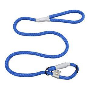 Cesar Millan Laisse de dressage en nylon pour chien 2 en 1 Taille L/XL Bleu - Publicité