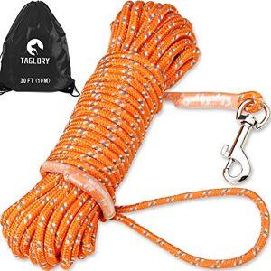 Taglory Laisse de Dressage de Chien de 10m, Long Corde en Nylon avec Poignée pour Petits Chiens Chats, Jouer Camping Jardin, Orange - Publicité