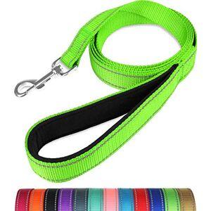 Taglory Laisse de Dressage réfléchissante pour Chien, poignée rembourrée en néoprne et Crochet en métal, 1.8m x 2.0cm Laisse en Nylon pour Petits Chiens, Vert - Publicité