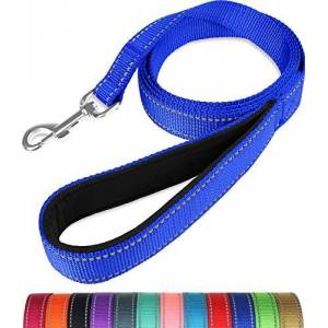 Taglory Laisse de Dressage réfléchissante pour Chien, poignée rembourrée en néoprne et Crochet en métal, 1.2m x 2.5cm Laisse en Nylon pour Petits Moyens Grands Chiens, Bleu Foncé - Publicité