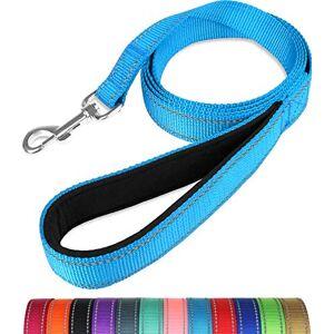 Taglory Laisse de Dressage réfléchissante pour Chien, poignée rembourrée en néoprne et Crochet en métal, 1.2m x 2.0cm Laisse en Nylon pour Petits Chiens, Bleu Ciel - Publicité