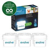 Aqua Optima Evolve - Lot pour 6 mois , 6 x filtres à eau 30 jours - compatible avec *BRITA Maxtra (pas *Maxtra+) - EVS602