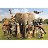 Empire Merchandising Poster avec Photo d'animaux Sauvages fourni avec des Accessoires