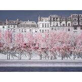 David Clapp (River Seine Infrared, Paris 60 x 80 cm Toile Imprimée
