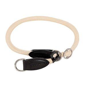lionto by dibea Collier pour chien collier retriever collier de dressage longeur 55 cm  1 cm Beige - Publicité