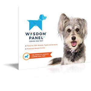 Wisdom Panel 2.0 Test ADN pour chien - Publicité