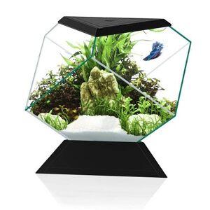 CIANO Aquarium Beta Nexus 5C noir - Publicité