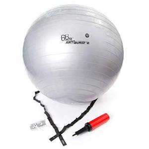 66FIT Ballon de Gym avec Pompe Argent 65cm - Publicité