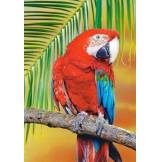 Castorland ailé Macaw Scie sauteuse (Lot de 500, Vert)