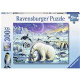 Ravensburger - 13203 4 - Puzzle - A La Rencontre des Animaux Polaires - 300 Pièces